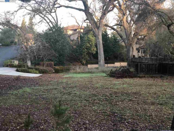 1538 Hillgrade Ave Alamo CA Home. Photo 40 of 40