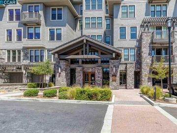 1000 Dewing Ave unit #407, Trails Area, CA