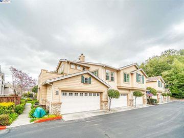 10747 Craigtown Ln, Ca Highlands, CA