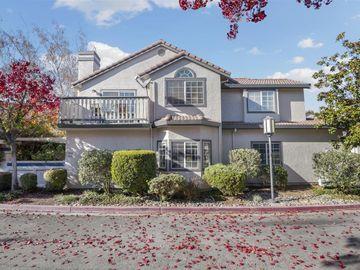 1081 Almaden Village Ln, San Jose, CA