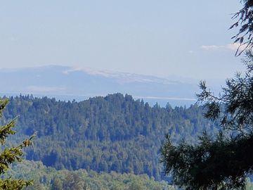 1240 El Solyo Heights Dr, Ben Lomond, CA