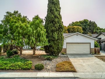 264 N Abbott Ave, Milpitas, CA