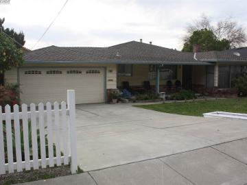 38627 Canyon Heights Dr, Niles Area, CA