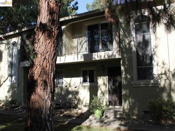 43 Meadowbrook Ave, Meadowbrook, CA