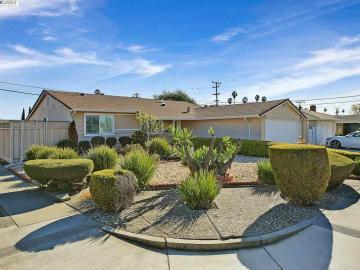 4802 Nelson St, Sundale, CA