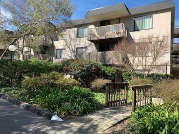 7336 Shelter Creek Ln unit #7336, San Bruno, CA