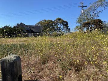 Mesa Way, Watsonville, CA